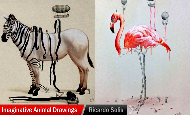 Creative Animals to Draw Animal Drawings by Ricardo