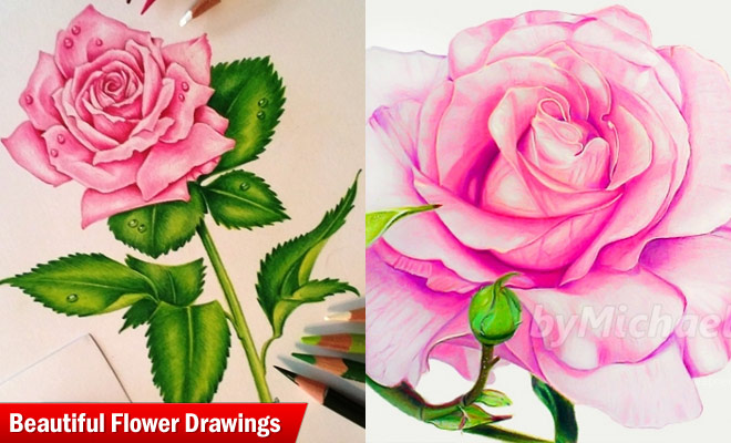 25 beautiful and stunning flower drawings from around the world flower drawings mightylinksfo