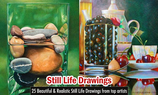 Still Life Drawings