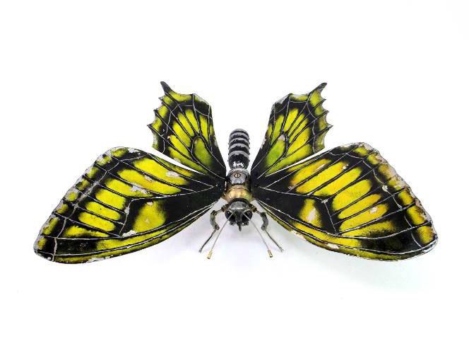 butterfly wing scrap sculptures igor