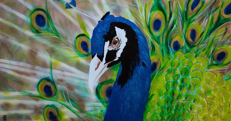 peacock painting emma sheldrake