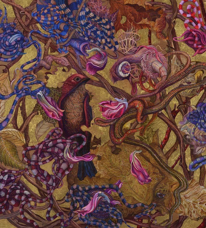 birds nest illustration judy