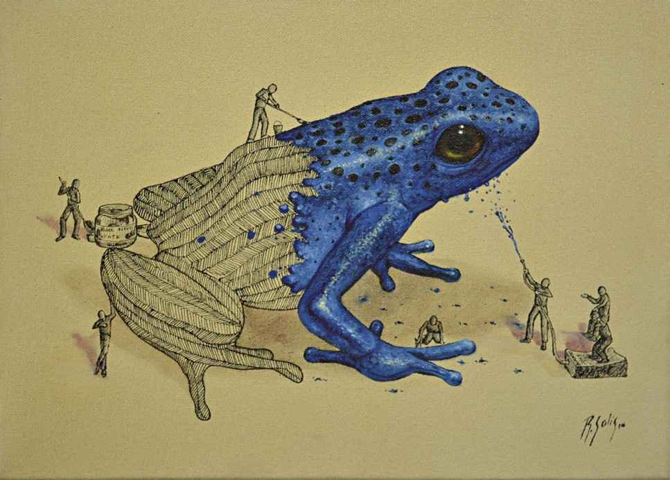blueberry frog illustration ricardo solis