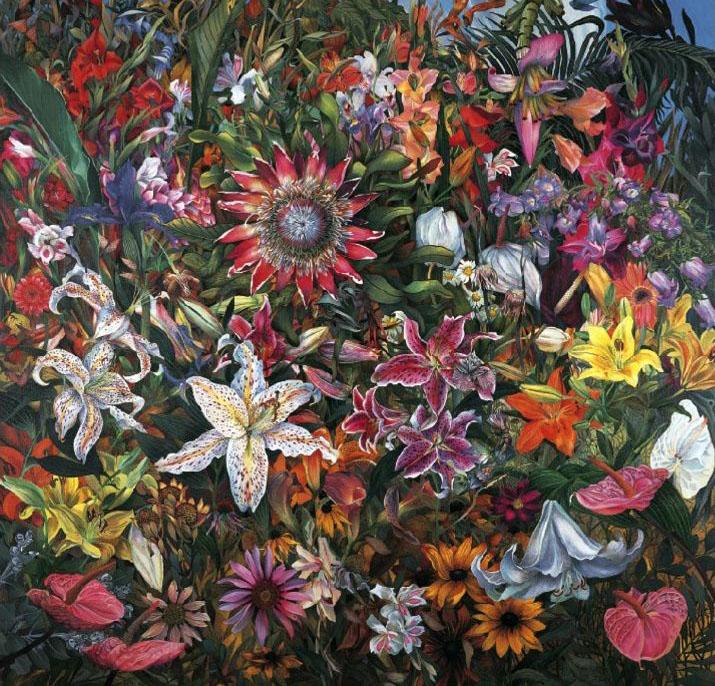 flower illustration judy