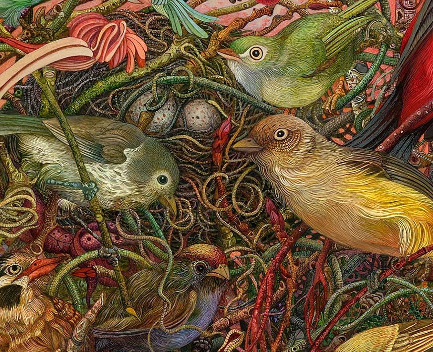 little birds illustration judy