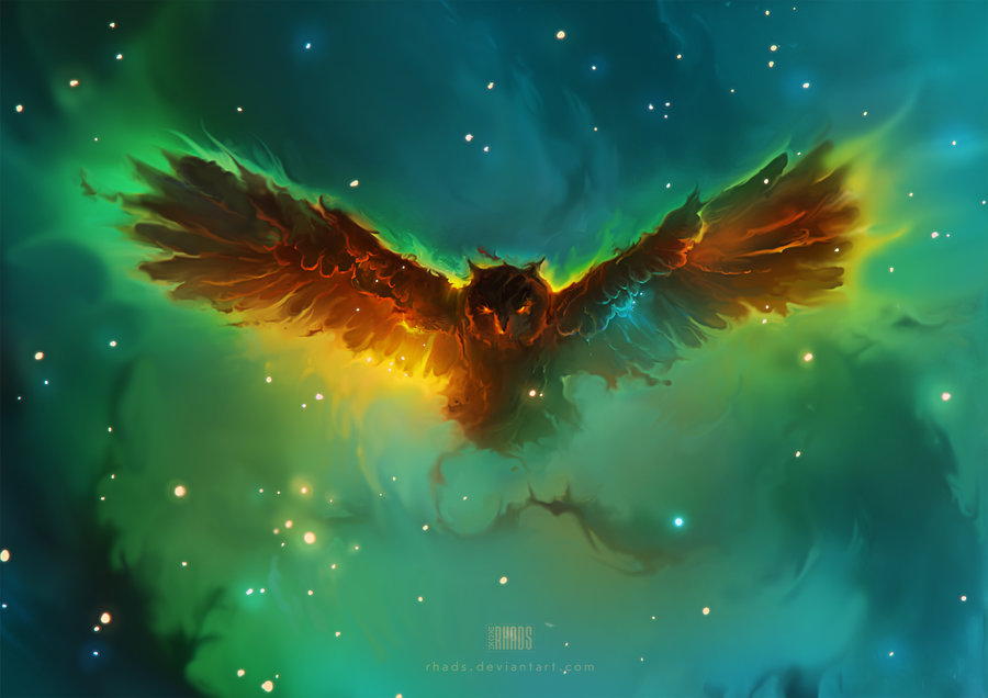 owl digital painting rhads