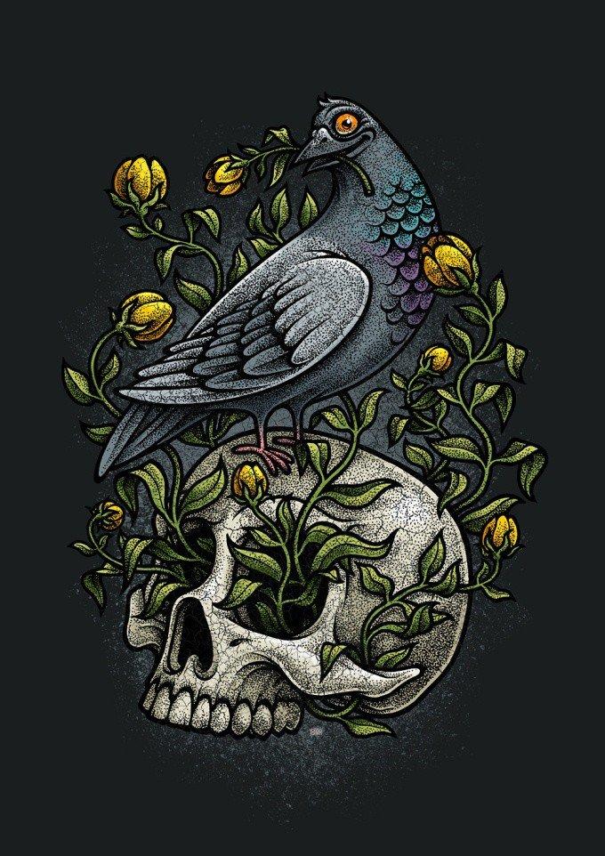 pigeon skull drawing oleg gert