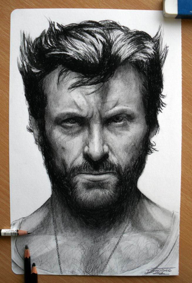 wolverine color pencil drawing dino