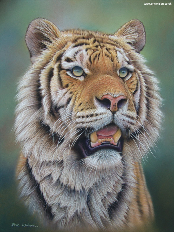 15 Realistic Pastel Paintings Of Animals From Eric Wilson