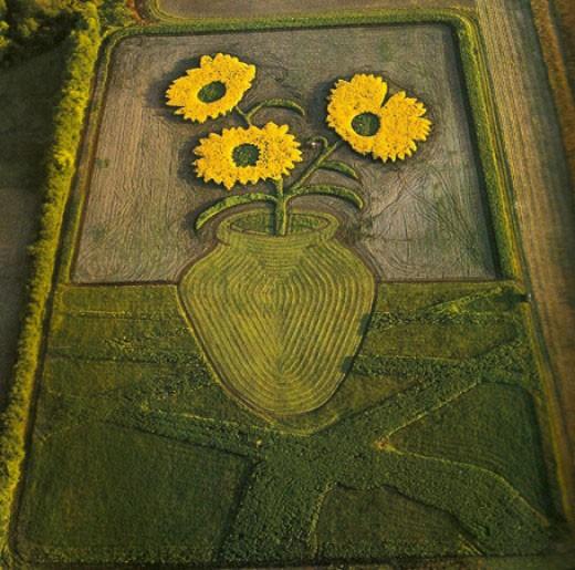 flowers creative art ideas by stan herd