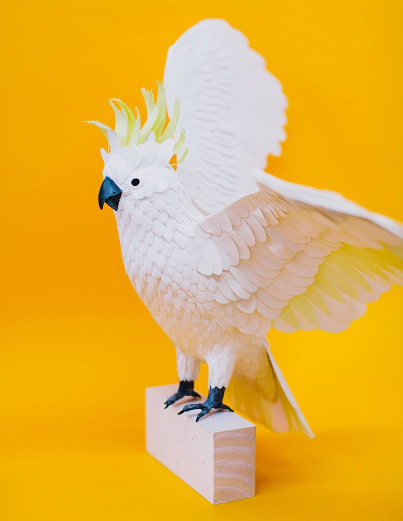 cockatoo bird paper sculptures by diana_0