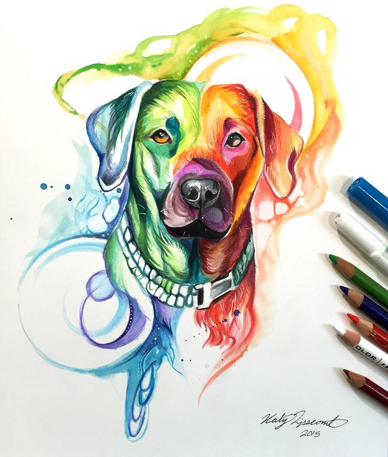 rainbow dog animal drawings by katy lipscomb