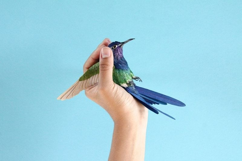 humming bird paper sculptures by diana