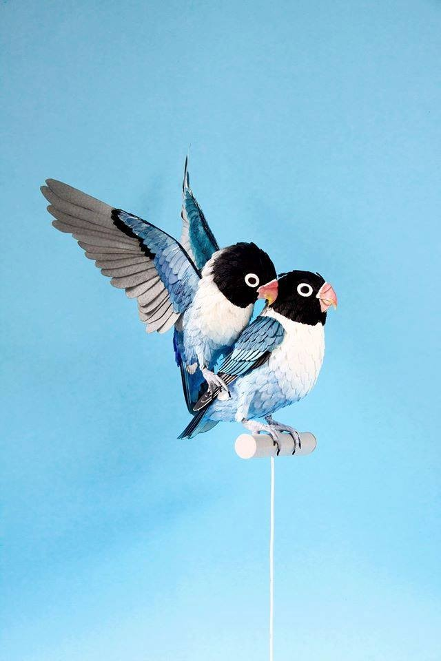 birds paper sculptures by diana_0