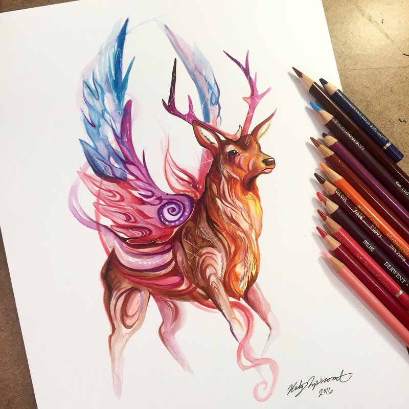 deer animal drawings by katy lipscomb