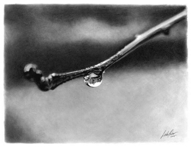 droplet pencil drawing linda huber