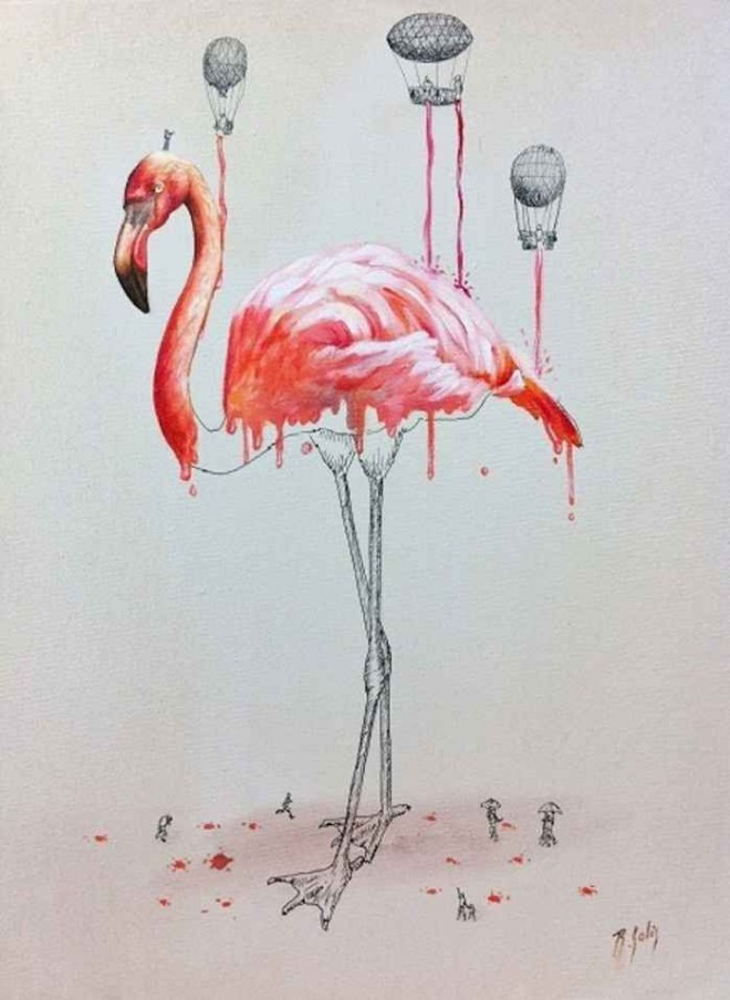 flamingo illustration ricardo solis