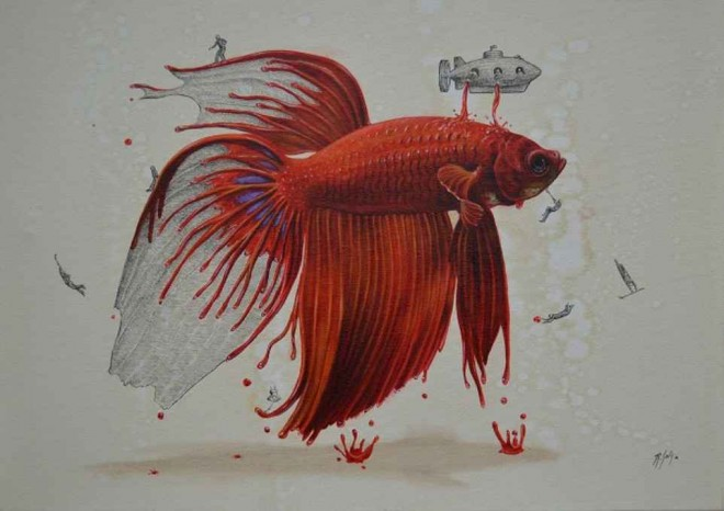 goldfish illustration ricardo solis
