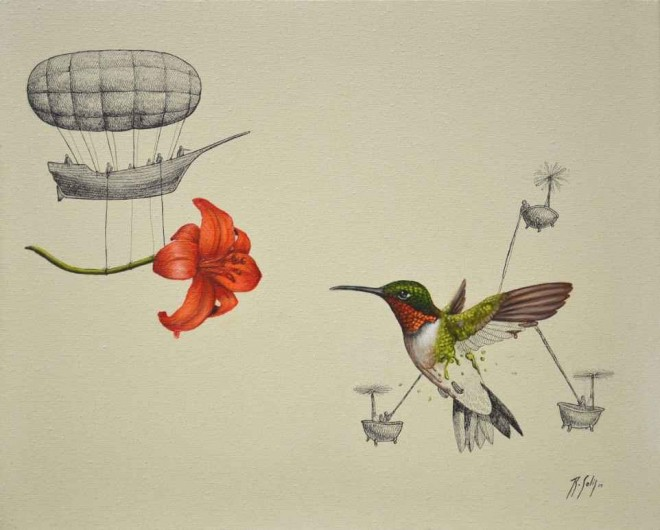 hummingbird illustration ricardo solis