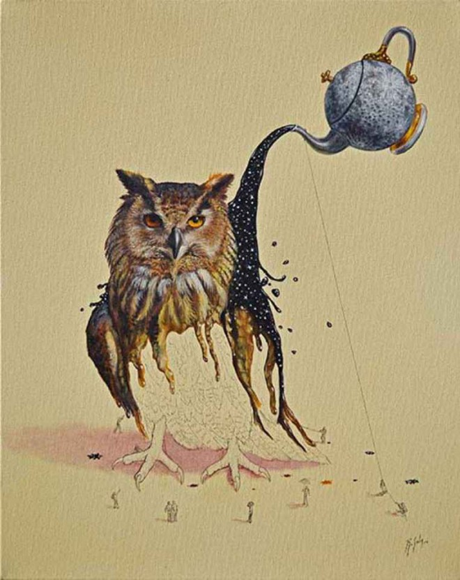 owl illustration ricardo solis