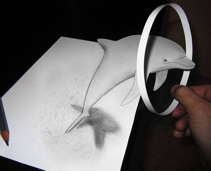 dolphin 3d pencil drawing