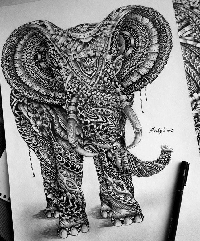 Elephant pencil drawing by maahy
