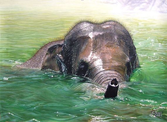 elephant painting by anand