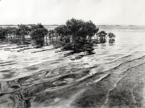 river pencil drawing