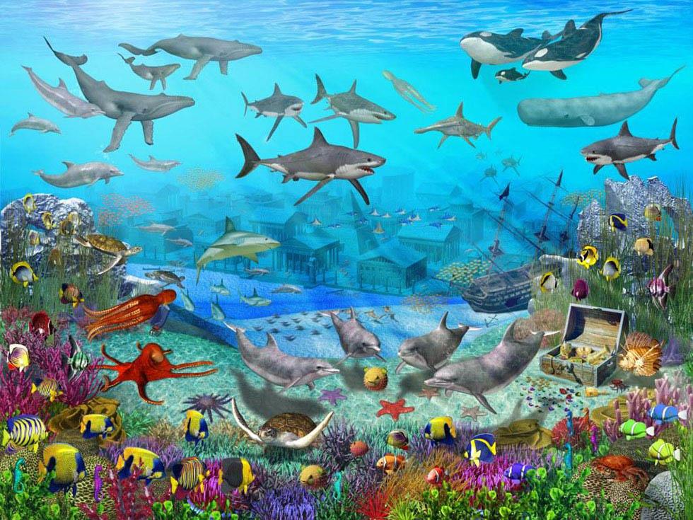 wall mural painting underwater sea