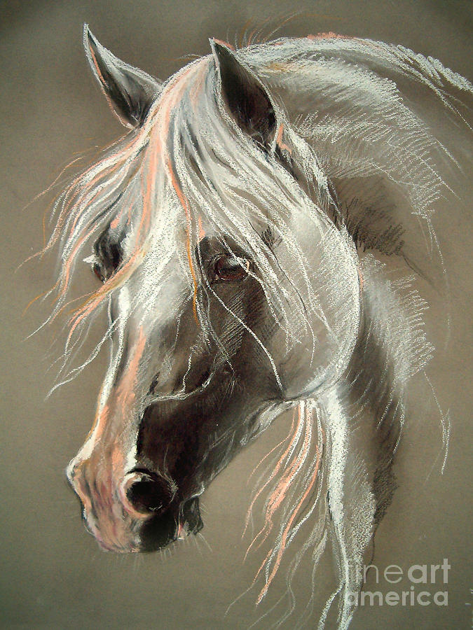 the grey horse pastel paintings
