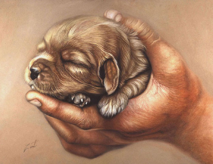 puppy pastel paintings