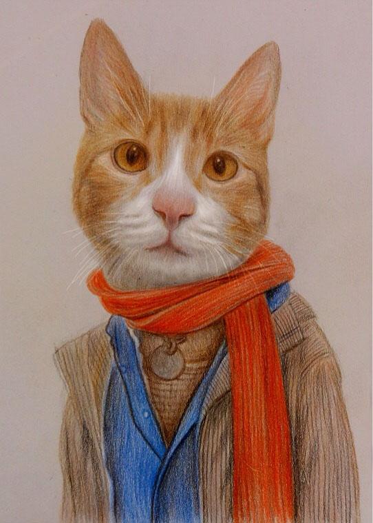 cat funny drawings