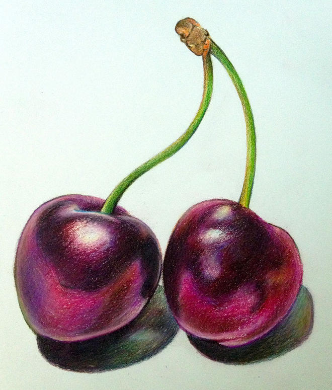 cherries still life drawings -  11