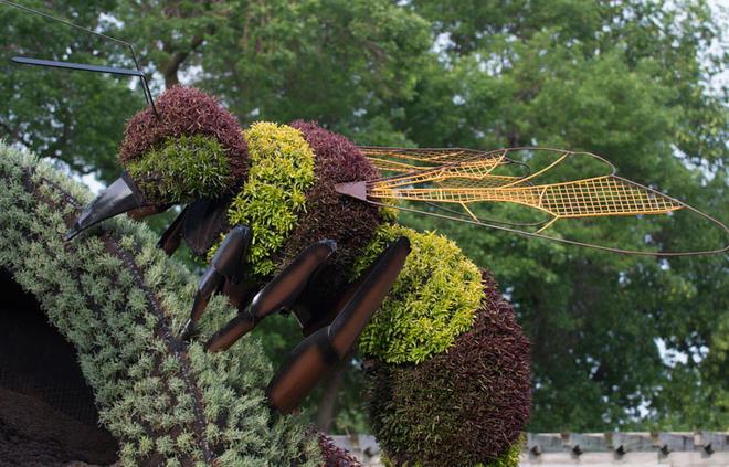 insect garden sculptures
