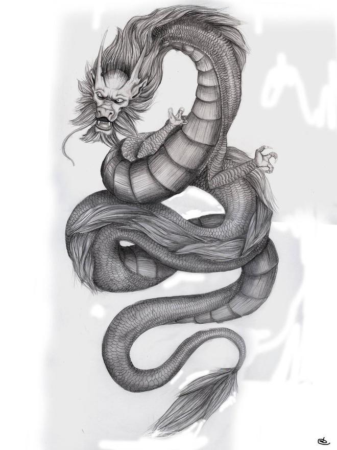 dragon drawings by asteer -  14
