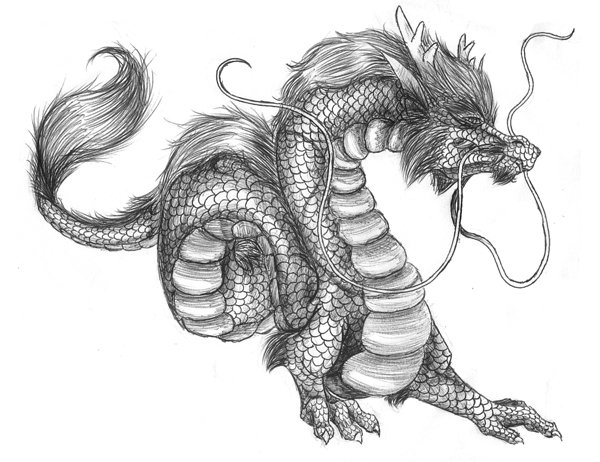 25 Stunning And Realistic Dragon Drawings From Around The