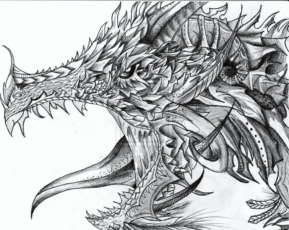 16 dragon drawings