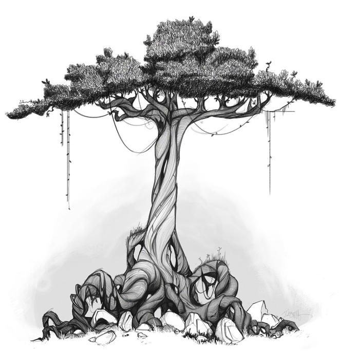 tree drawing -  16