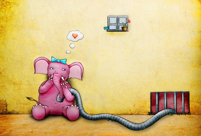 elephant funny drawings -  17
