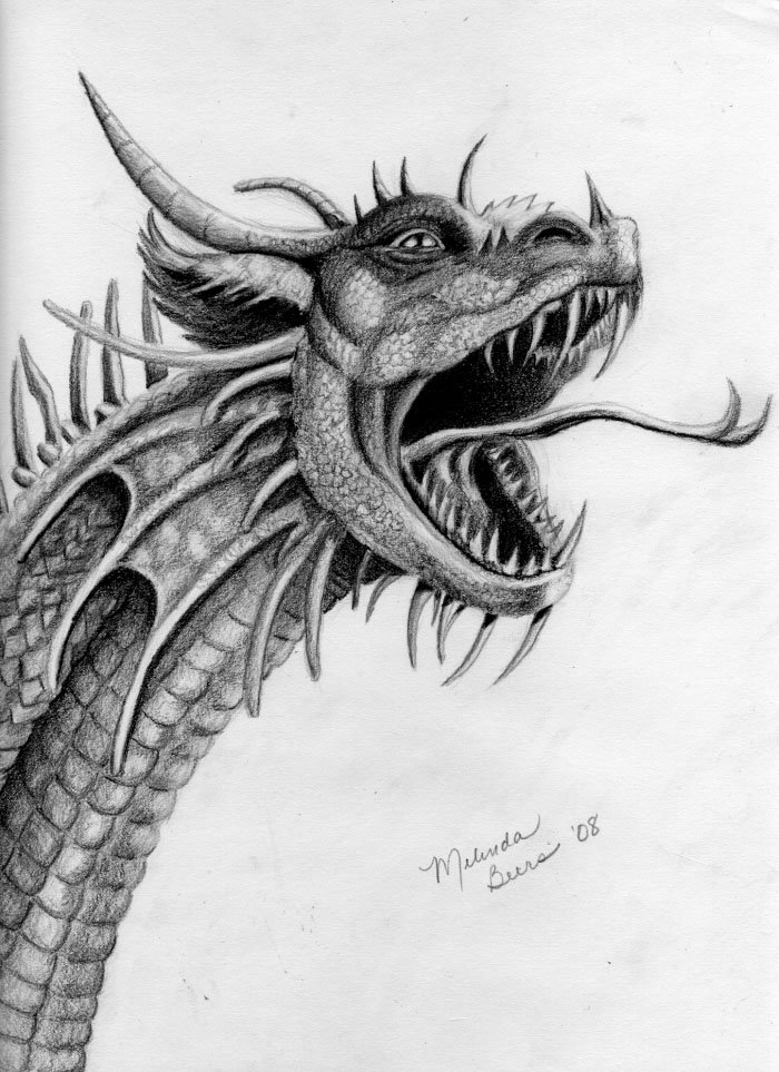 19 dragon drawings