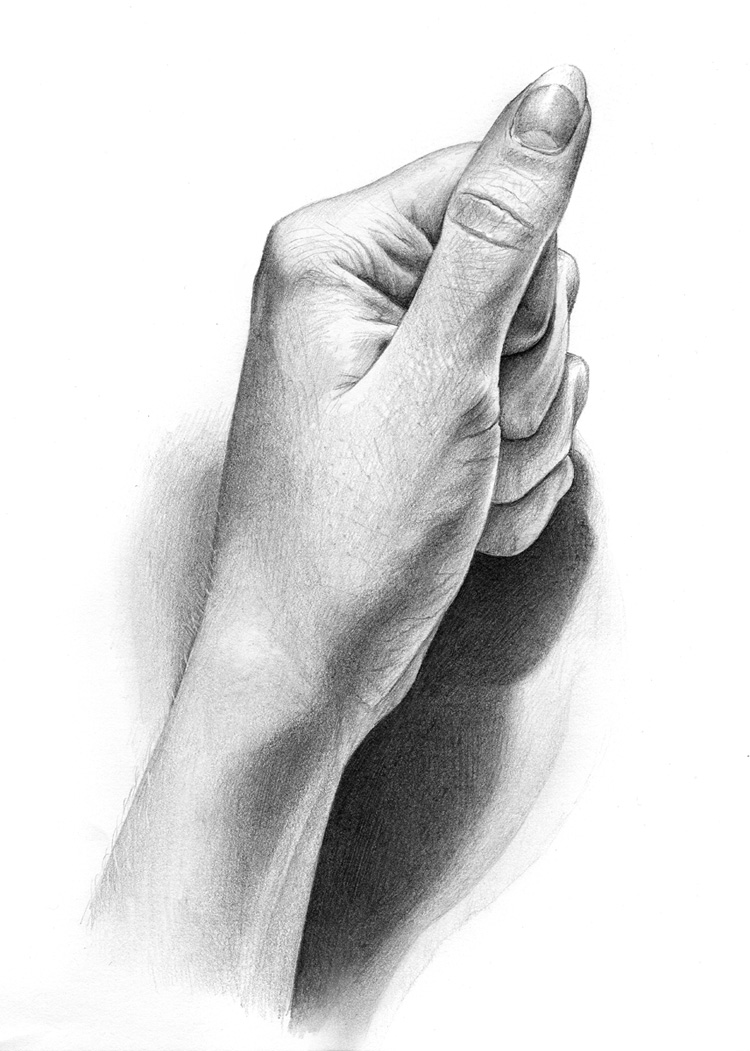 hand drawings by rowen silver -  19