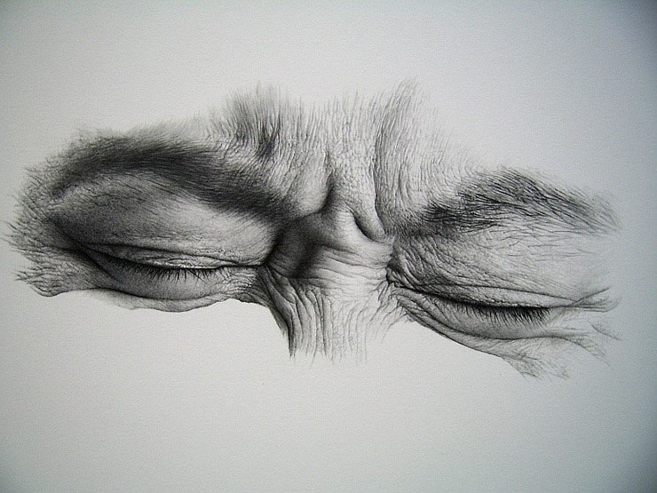 amazing drawings by sharppower