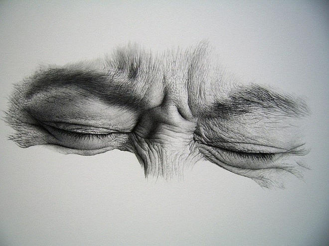 amazing drawings by sharppower -  22