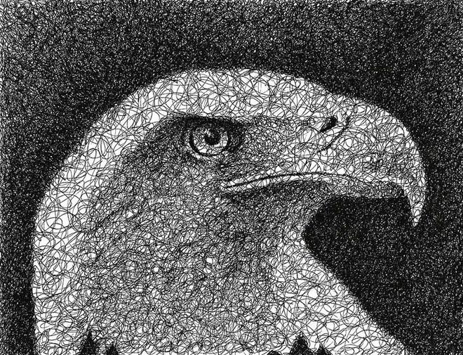 eagle scribbles by nathan shegrud -  24