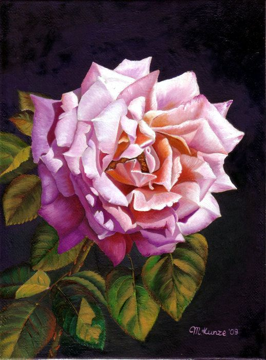 24 rose flower paintings