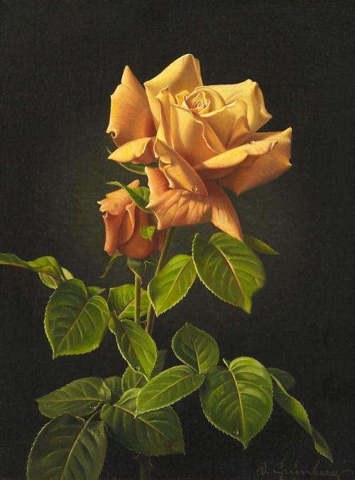 rose flower paintings -  3