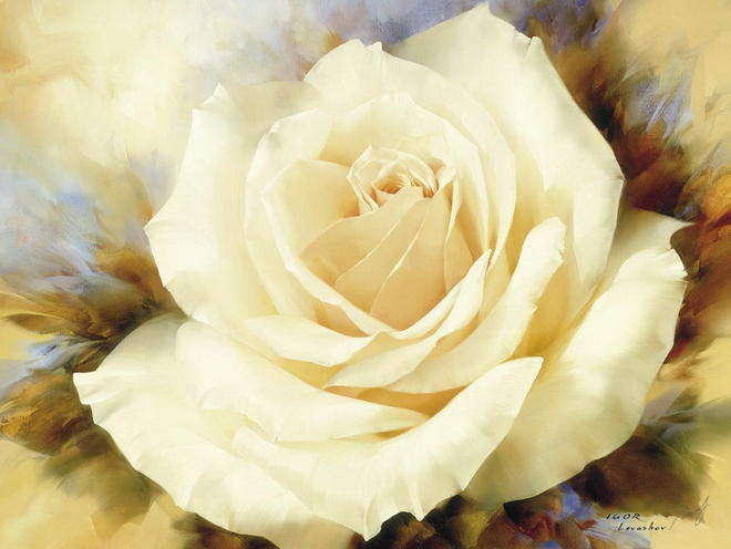 yellow rose flower painting -  30