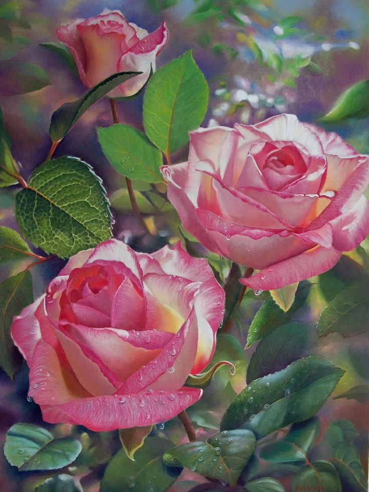 rose flower paintings -  5