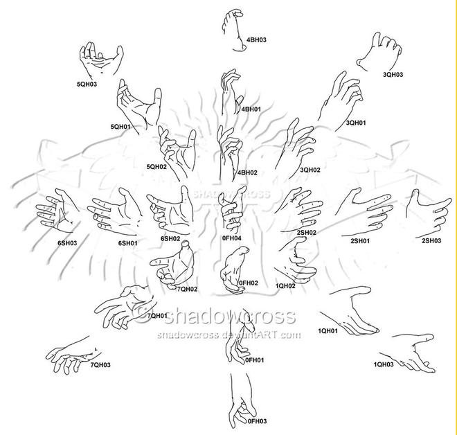 hand anatomy drawing -  8