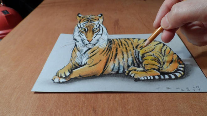 tiger 3d drawings -  8